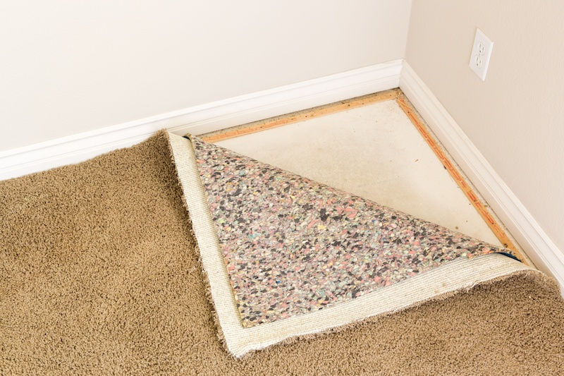 Image result for Choose the right carpet for your home