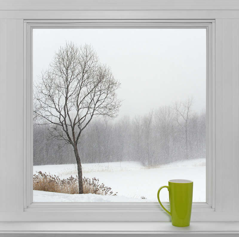 Top 6 Styles of Windows For Homes - Energy Efficiency