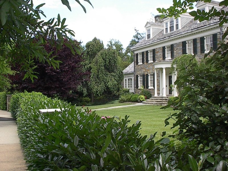 Landscaping Your Yard: 7 Tips You Need To Know